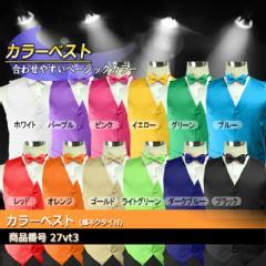 173c1b96a5337 ベスト カラーベスト 蝶ネクタイ 2点セット ステージ衣装 ダンス衣装 カラオケ衣装 舞台衣装